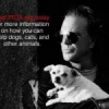 Hundefreund Mickey Rourke