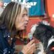 Dogtoberfest 2009: Hundeoktoberfest mit Stargast WATERLOO