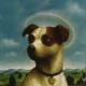 Saint Guinefort – Ein Hund als Heiliger und Märtyrer