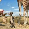 Konferenz der Tiere – Der erste deutsche Animationsfilm in 3D