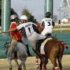 Österreichisches Horse-Ball Nationalteam für die Euro 2011 qualifiziert