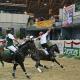 Österreichische Staatsmeisterschaft in Horse-Ball