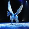 Magnifico – André Hellers atemberaubende Pferdeshow