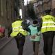 """""""Eingemauerte"""" Hunde von Sarajevo nach Protestwelle gerettet – detailierter Fotobericht"""