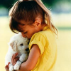 Hundezubehör: Umsatzplus von 2,6 Prozent am deutschen Heimtiermarkt
