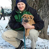 Unbekannte binden Hundewelpen bei Eiseskälte an Zaun