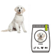 9 Kriterien zur optimalen Hundeernährung