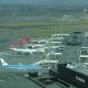 10.000 Gänse sollen wegen Flugsicherheit getötet werden