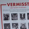 """Wenn dein Haustier von Jägern erschossen wird: Aktion """"Stoppt den Haustierabschuss"""""""