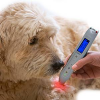 Lasertherapie in der Tiermedizin