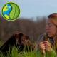 Tierfutter ganzheitlich betrachtet