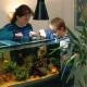 Effiziente Ausstattung & Rabattcodes: Strom sparen beim Warmwasser-Aquarium
