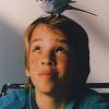 Tipps für Vogelfreunde: So bleiben die Tapeten ganz