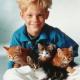Katzen und Kinder: Darauf sollten Eltern achten