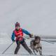 Skijöring: Mit Hund und Skiern auf der Loipe