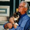 Katzen: Ideale Wohnungsgenossen für Senioren