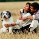 Liebe auf den zweiten Blick: So springt der Funke zwischen Hund und neuem Partner über