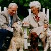 Ein Hund, zwei Halter, dreifache Freude – Dogsharing richtig planen