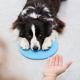 Richtiges Clickertraining macht bei Hunden einen klaren Unterschied