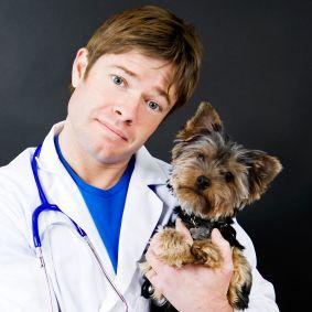 ONLINE DOC auf Facebook