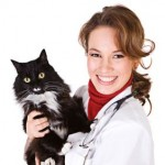 Online Doc mit Katze - Foto: fotolia
