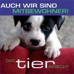 Foto: TIR