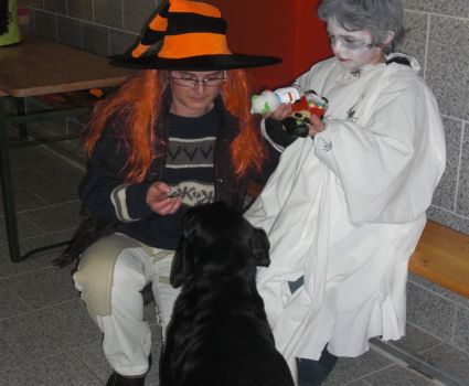 BELLOWEEN: Halloween für Hunde - Halloween Dog Party
