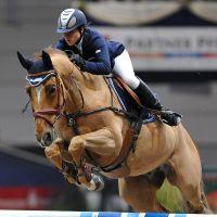 Partner Pferd Leipziger Messe