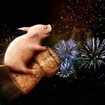 Prosit Neujahr, Silvester, Feuerwerk, Glücksschwein - © Barbara Eckholdt / fotolia.com