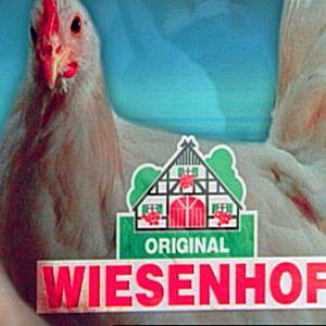 Qualität von Wiesenhof - Schein und Sein