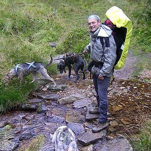 Dogtrekking - Hundesport für NaturliebhaberInnen