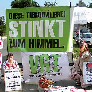 VGT in Aktion / Foto: VGT