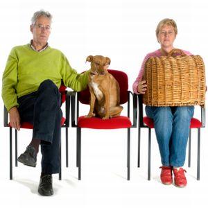 hunde entwurmen wie oft