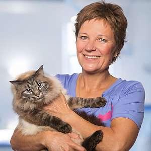 TierarztBLOG.com - DAS UNTERHALTSAME WISSENSPORTAL FÜR..